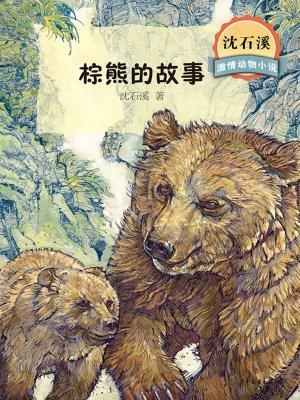 棕熊的故事(沈石溪激情动物小说)[精品]