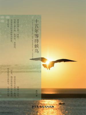 十五年等待候鸟(完美典藏版)