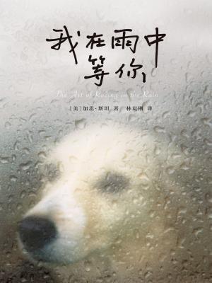 我在雨中等你