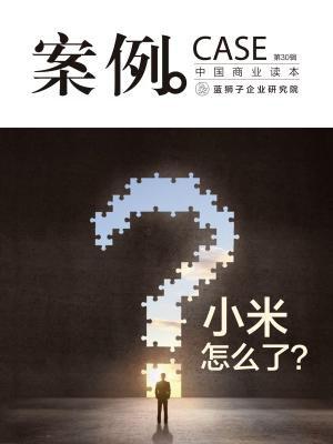 案例:小米怎么了?(第30辑)