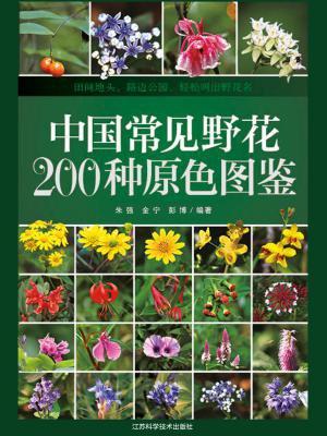 中国常见野花200种原色图鉴[精品]