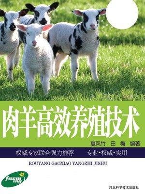 肉羊高效养殖技术