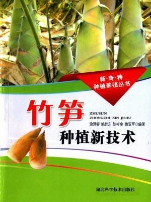 竹笋种植新技术