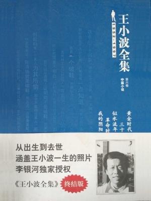 王小波全集(中篇小说)第六卷:黄金时代