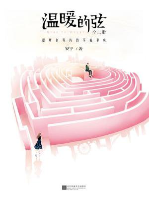 温暖的弦:愿所有等待终不被辜负(全二册)