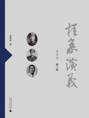 桂系演义(增补版)(第一册)