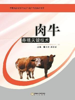 肉牛养殖关键技术