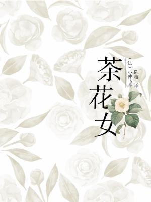 茶花女-(法)小仲马著 陈越  译[精品]