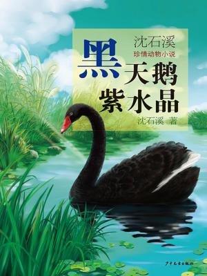 黑天鹅紫水晶(沈石溪激情动物小说)[精品]