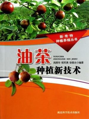 油茶种植新技术
