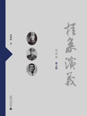 桂系演义(增补版)(第三册)