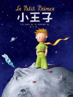 小王子(2017全新畅销译本)(作家榜经典文库)[精品]